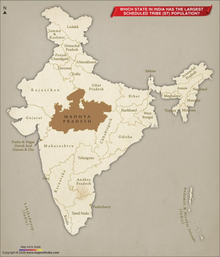 Map of India Showing State with the Largest Scheduled Tribe Population