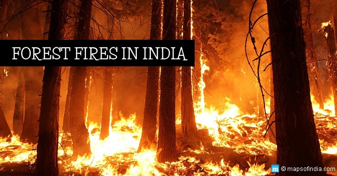 Forest-Fires-in-India