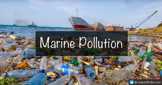 Marine Pollution: Causes, Types, Effects & Prevention