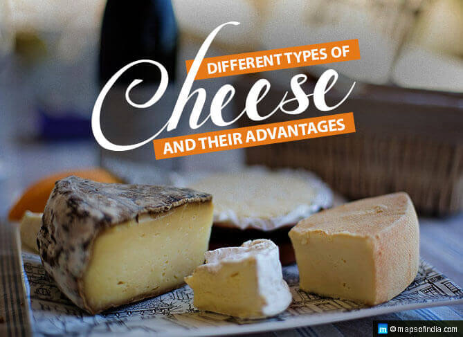 Different Types of Cheese and Their Advantages